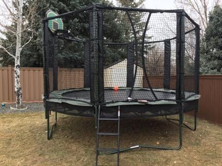 Trampoline with ladder and safety net, alleyoop, denver