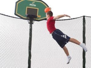pro flex basketball hoop